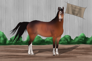 PSH Import 035 by RvS-RiverineStables