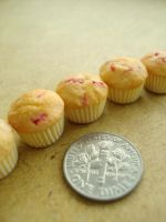 cranberry muffins 1-4 by Snowfern