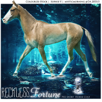 Reckless Fortune by Nightfall-Fields