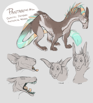 Pantropical ref by Finchwing