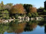 Japanese Friendship Garden by LaurelPhotoandCraft
