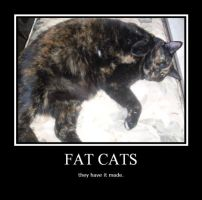 Fat cats motivational poster by AkwardStranger
