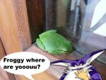 froggy...where are you? by ashthedragon