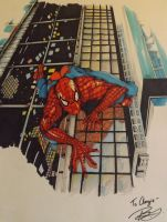 Spiderman (Finished Color) by BlackCoffee-BlueInk