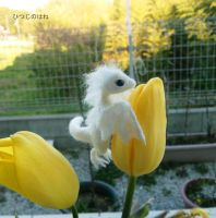 Spring has come! 2 by sheeps-wing