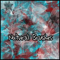 Naturalis Brushes by Lunalight