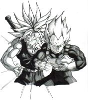 ssj trunks and ssj vegeta 2 by trunks24