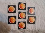 The Dragon Ball Mini Canvas Magnet Set by awilli182