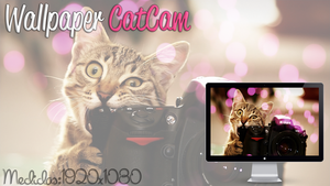 Wallpaper CatCam by jessy-izan