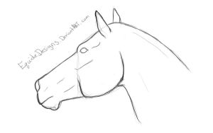 Horse Headshot Lines by EquideDesigns