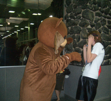 Pedobear Attack by watermelonseeds