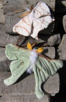 Plush Luna Moth and Swallowtail Moth by Verdego