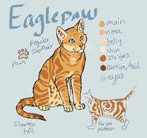 Eaglepaw's Reference by Alex-Harrier