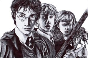 Harry Potter in Biro by pongyboy