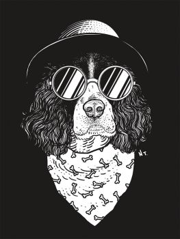 Spaniel (gif) by NickTeo