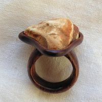 Amber and Wood 2698 by AmberSculpture