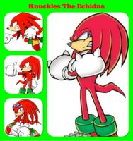Knuckles The Echidna -Photo Collage by FinnLoverFanGirl