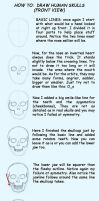 How to: Skulls-front view by Dmikado
