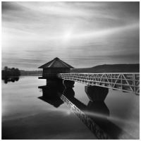 Holga 037 by my-plastic-eye