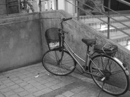 Bike beside the stairs-2 by cathyss02