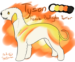 Tyson Reference Commission by SanjanaStone