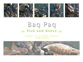 Fish with Geese Pack by Baq-Stock