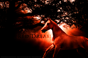 Red Dream by Sommer-Studios