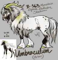 B-563 Umbraculum - Umber Reference by daughterofthestars