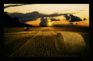 Dawn in the fields by Crossie