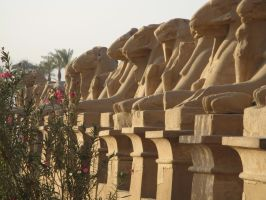 Sphinx Alley by vdf