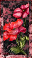 Painted poppies. by miss69