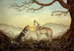 dog and wolf by moussee