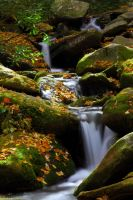 Mountain Stream by sassybikerchic