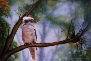Kookaburra by Lil-el-art
