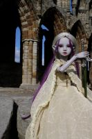 Drisimi at Whitby Abby IV by karla-chan