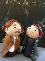 Tonks and Lupin by KatjaFin