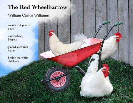 The red wheelbarrow essay
