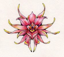 lotus flower design by festering08