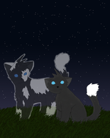 Honoring Starclan by Moon-feather