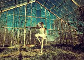 Glasshouse ballet by Mojlo