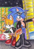 sonic y tails en el Radical by rouge-bat