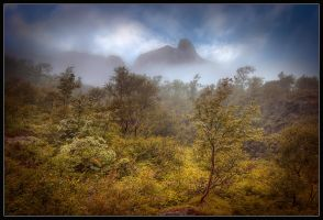 Misty Mountain HDR by Basement127