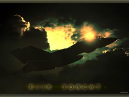 F-14 TOMCAT in Twilight zone by Swaroop