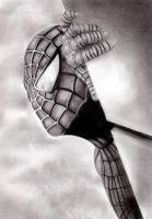 Spiderman by MyEyesFixedOnTheSun