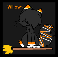 .:Willow:. by pokemonshadow