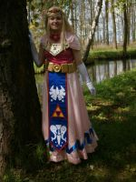 Toon Zelda, waiting in the forest by DutchGirlMaaike