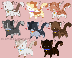 Cat adoptable name your price OPEN by Lobinhaa