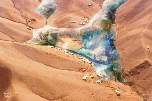 Martian Oasis by Ludo38