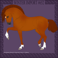 Winter Import #652 by DovieCaba
