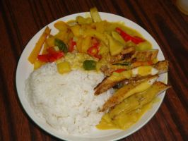 my cooking-Vegetables chicken curry by sinammonite